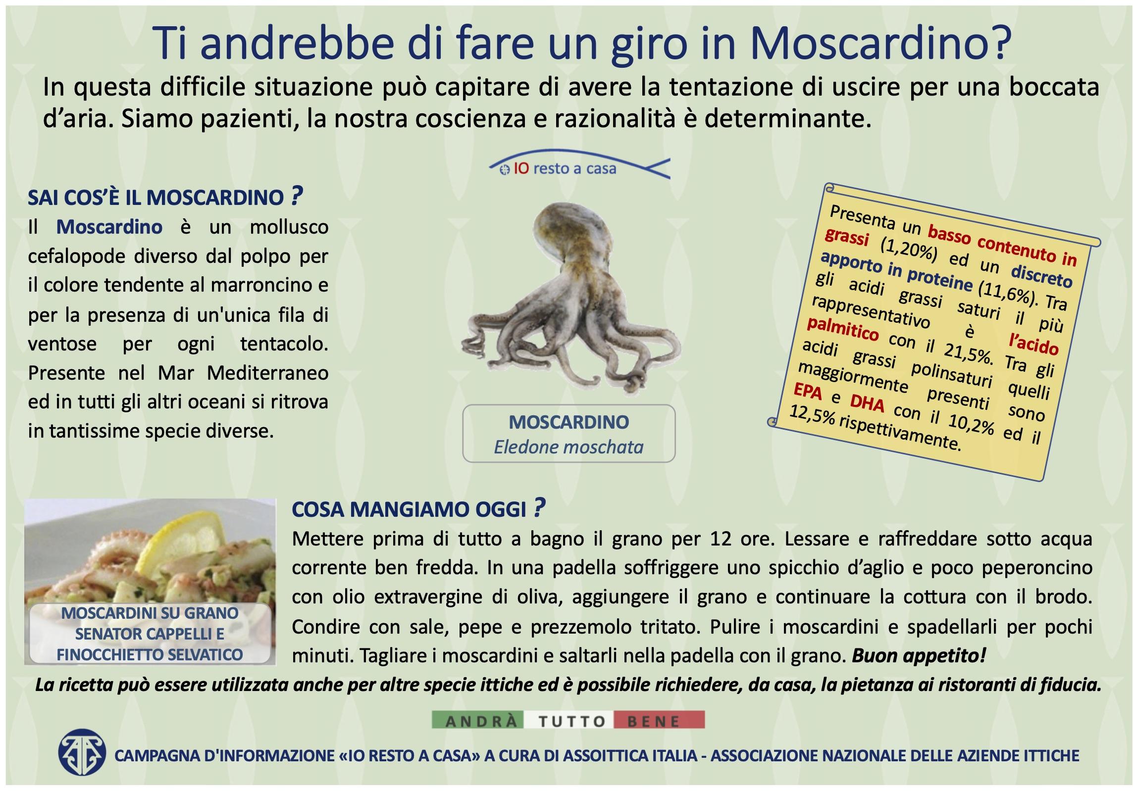 33 Campagna Assoittica per Coronavirus Moscardino
