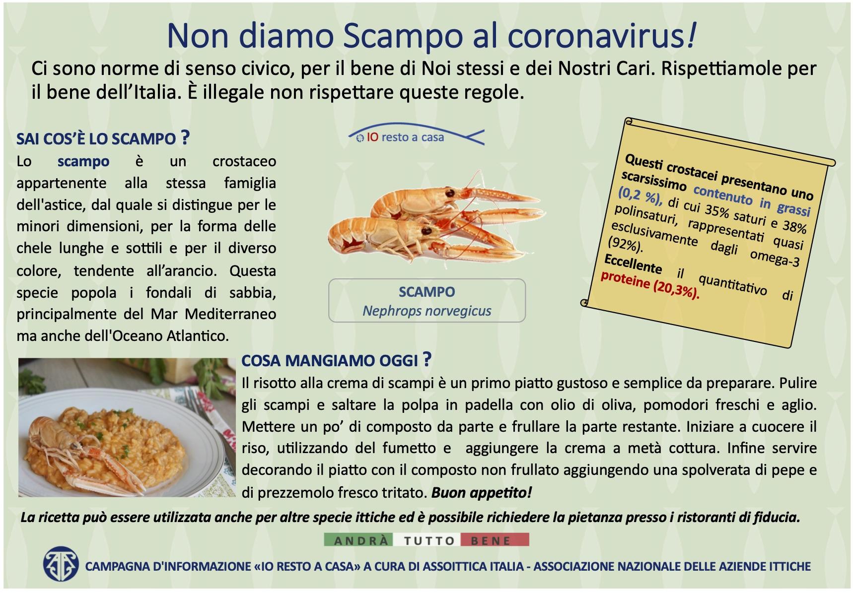 3 Camapagna Assoittica per Coronavirus Scampo