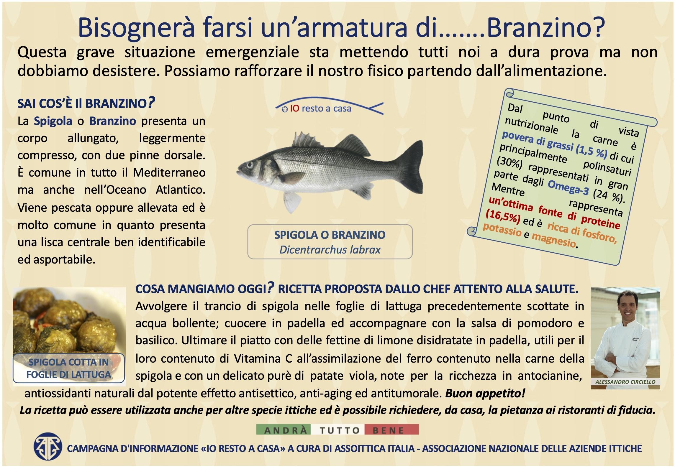 s18 Campagna Assoittica per Coronavirus Spigola copia