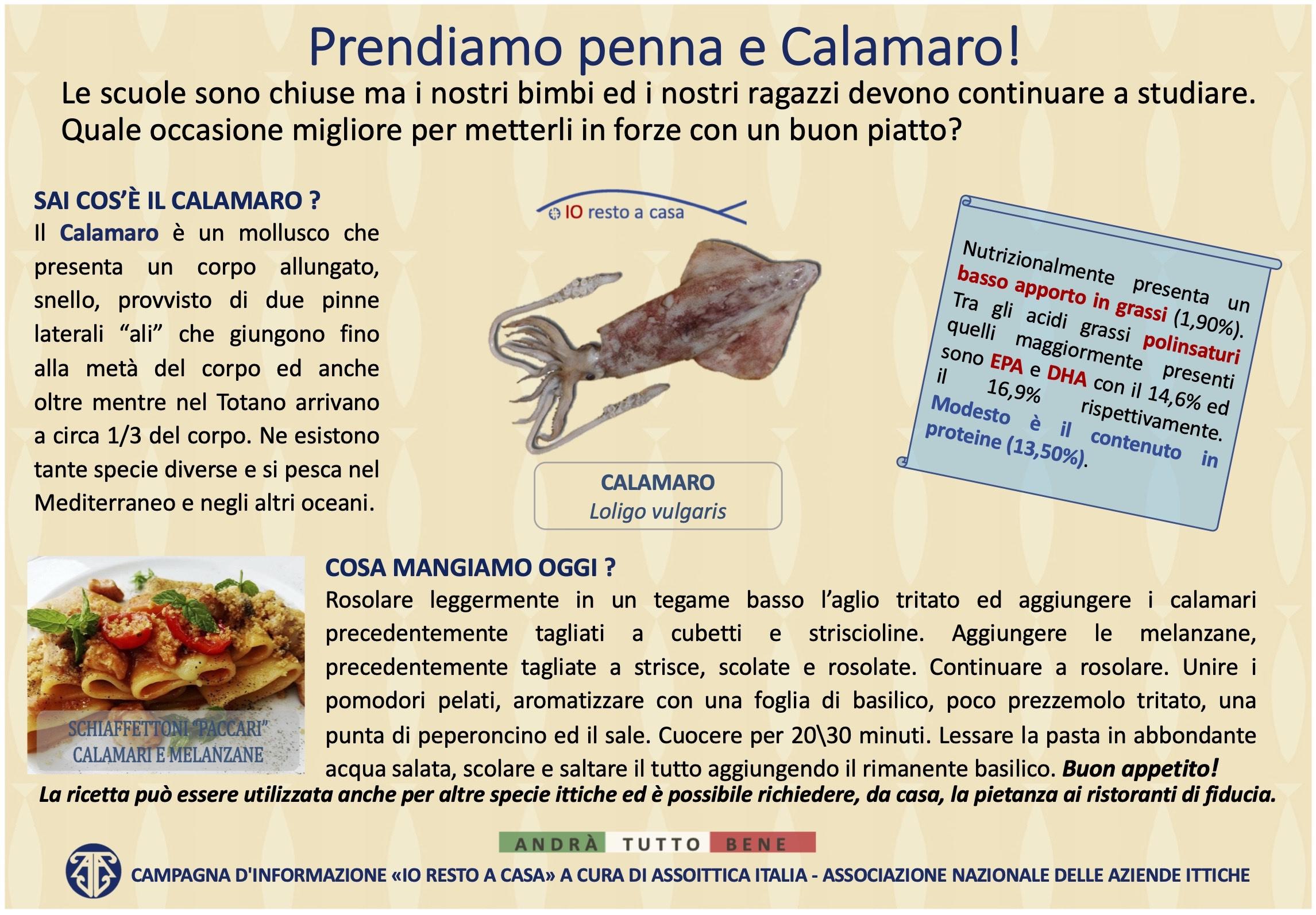 s22 Campagna Assoittica per Coronavirus Calamaro copia 2